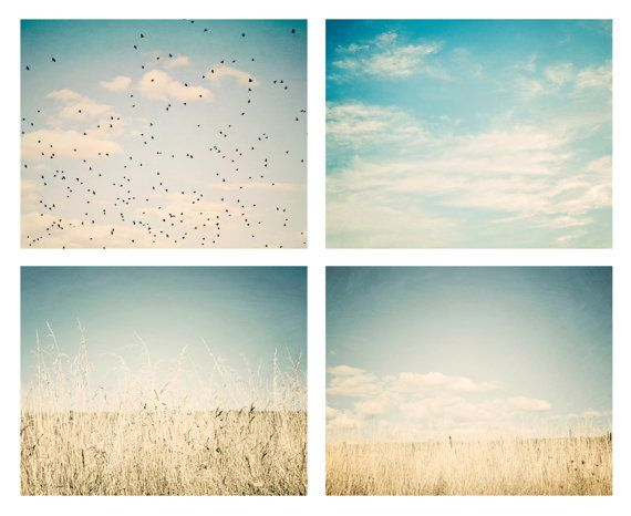 Large wall art - Set of 4 16x20 nature photos - pale blue, mint, aqua, teal, yellow, ivory, white -fields, birds, clouds, sky photography