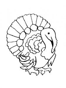 The 25 best Turkey coloring pages ideas on Pinterest Turkey