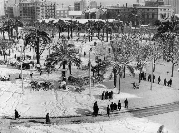 La nieve tiñió de blanco las palmeras de la plaza de Tetuán. ARCHIVO / BERT