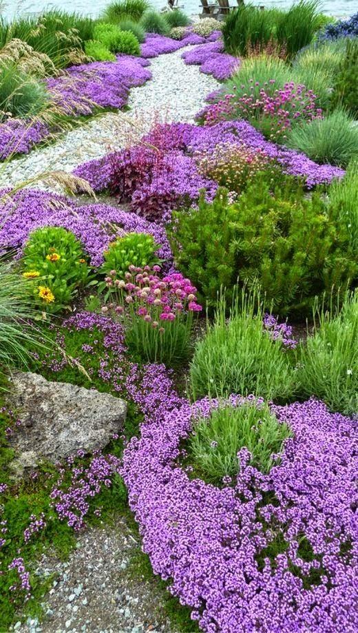 Secret garden design - Low growing bedding plants