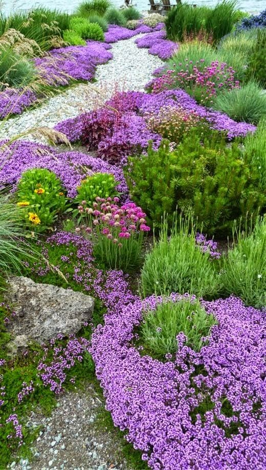 Secret garden design low growing bedding plants the for Landscape design sheets
