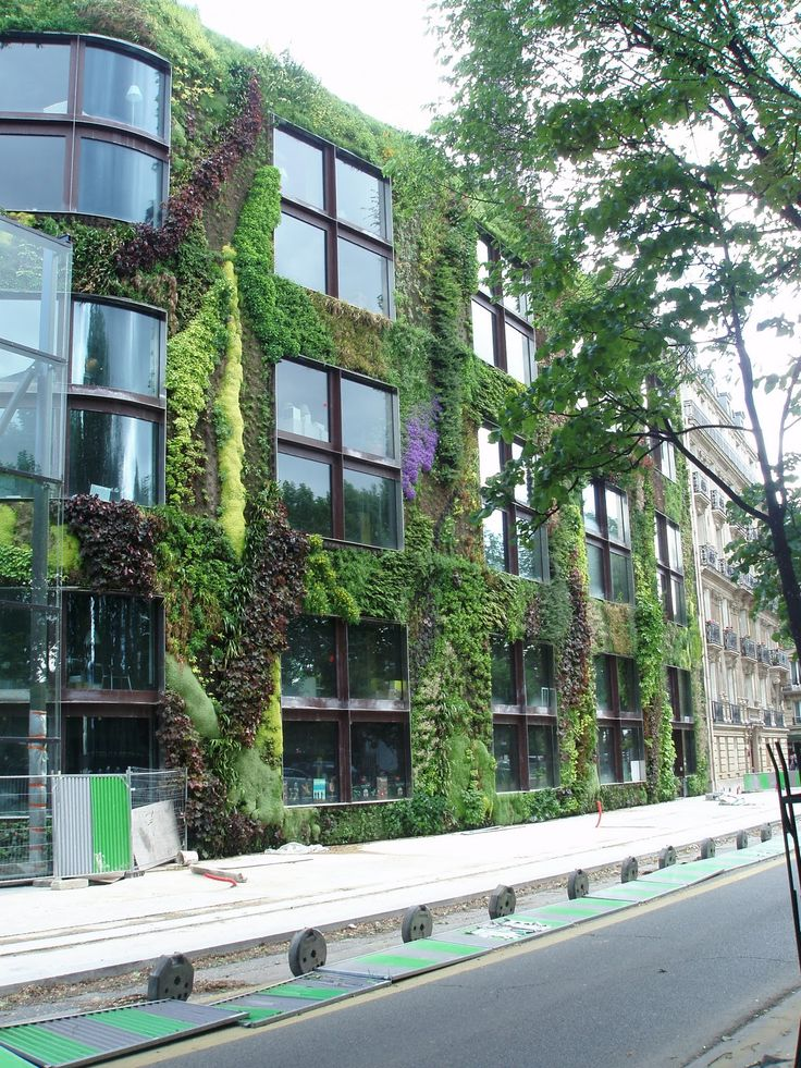 How To Build A Living Wall 1430 best green facade and wall images on pinterest | vertical