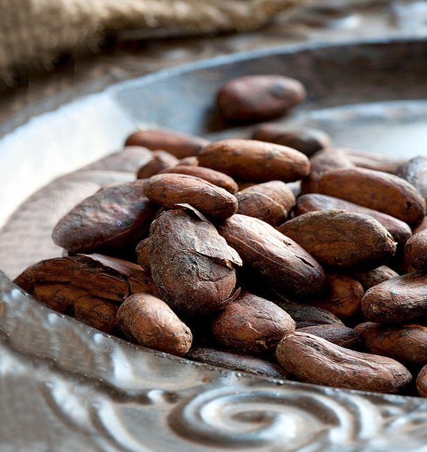 Dalle cabosse al cioccolato solido | http://www.ilpastonudo.it/castadiva/il-cibo-degli-dei/dalle-cabosse-al-cioccolato-solido/