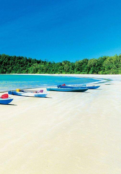 Cape Tribulation Beach,Queensland, Australia #perfectdays #seakayaks #capetribulation #thisisqueensland