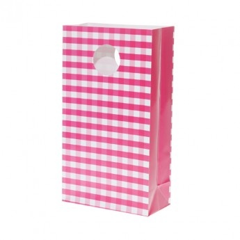 Bright Pink Gingham Party Bags (pack of 6)
