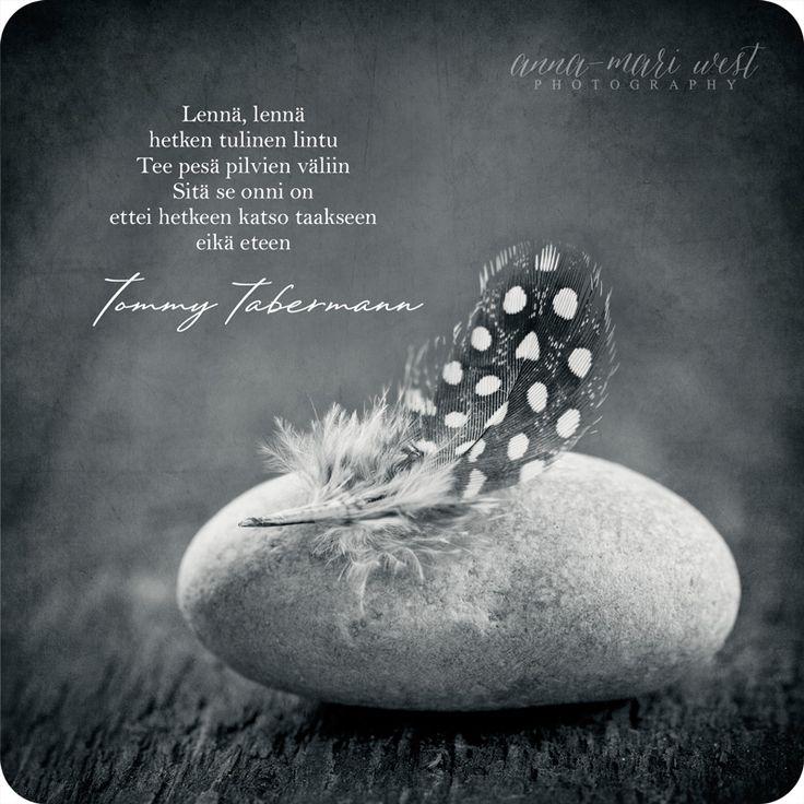 Kortti; Sitä se onni on | Anna-Mari West Photography