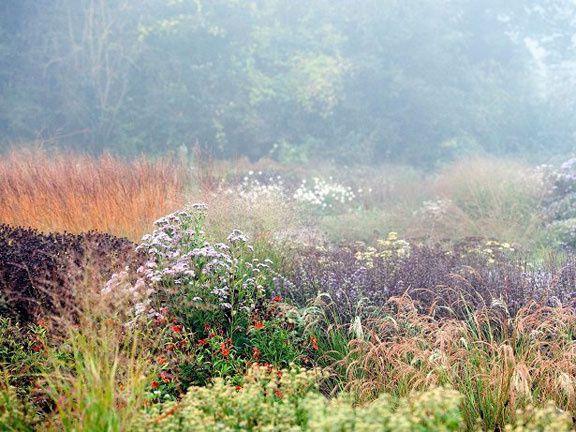 Les jardins naturels de Piet Oudolf, sur la High Line de New York, qui traverse et surplombe Meatpacking District.