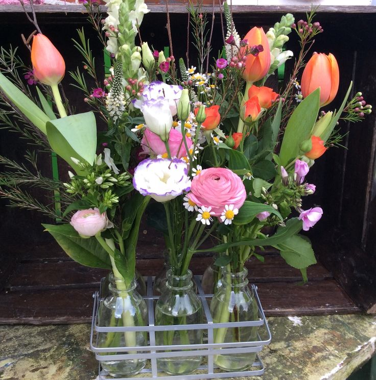 One of our most wanted...garden in mini bottles.   Www.greendoorflorist.com