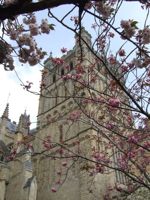 Exeter Cathedral, Exeter, England