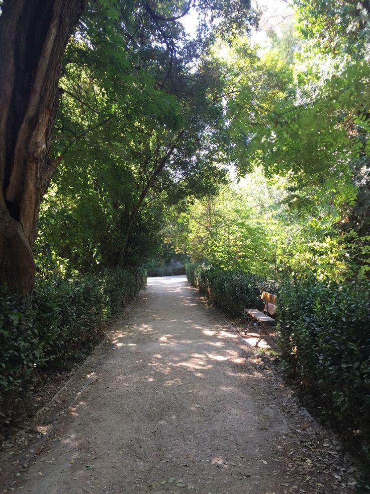 National Gardens #athens #grecee