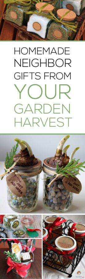 Save money giving great neighbor Christmas gifts that use your garden harvest! I love the 7th idea!