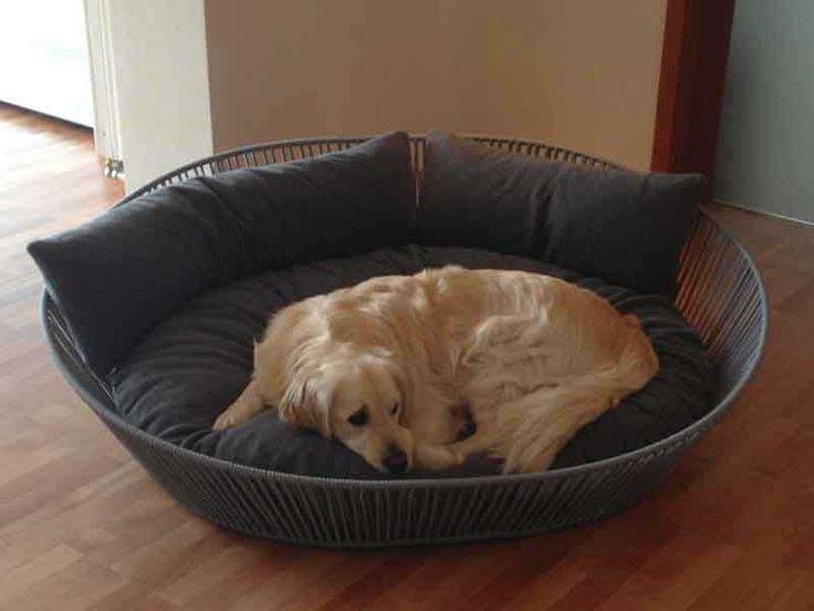 Hundebett XXL mit Latexkissen, sehr hochwertig verarbeitet.
