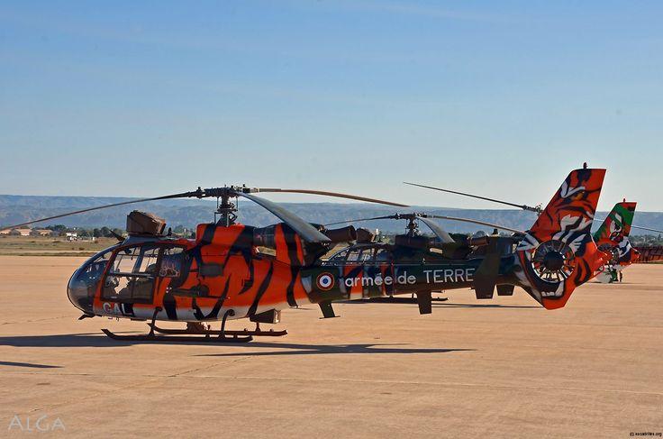 Gazelle du 3e RHC d'Etain (unité invitée). Hélicoptères du Tiger Meet 2016