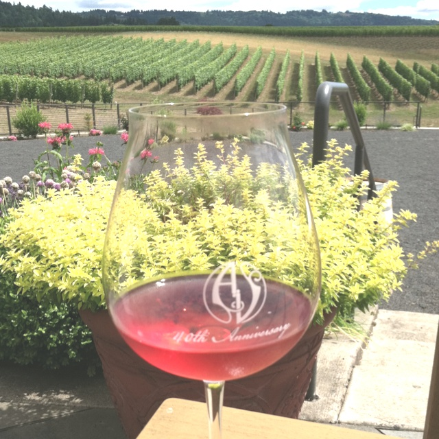 Adelsheim Vineyards in Oregon. Lovely wine to accompany the lovely view!