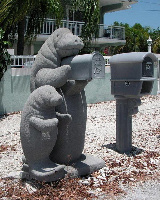 manatee mailbox- I bet you would check your mail more often if you had this, huh?: Manat Mailbox, Beaches House, Google Search, Florida Keys, Manatees Mailbox, Yard Decor, Landscape Ideas, Front Yard Landscape, Mail Boxes