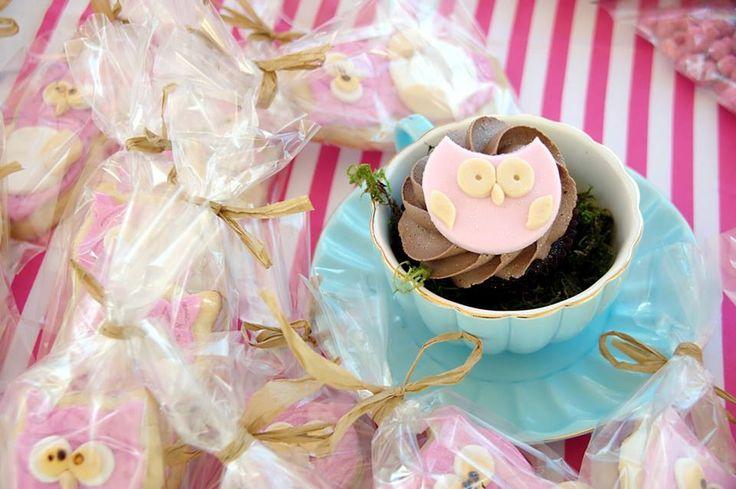 Owl in a teacup