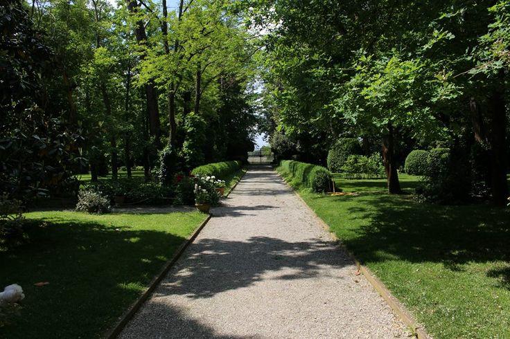 Viale - Villa Rota