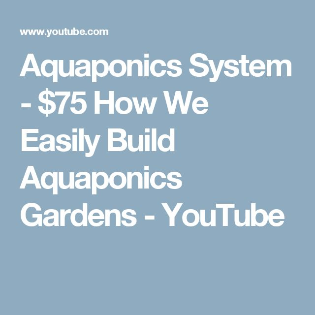 Aquaponics System - $75 How We Easily Build Aquaponics Gardens - YouTube