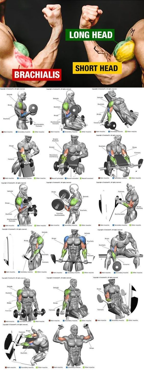 💪HOW TO WIDER ARMS