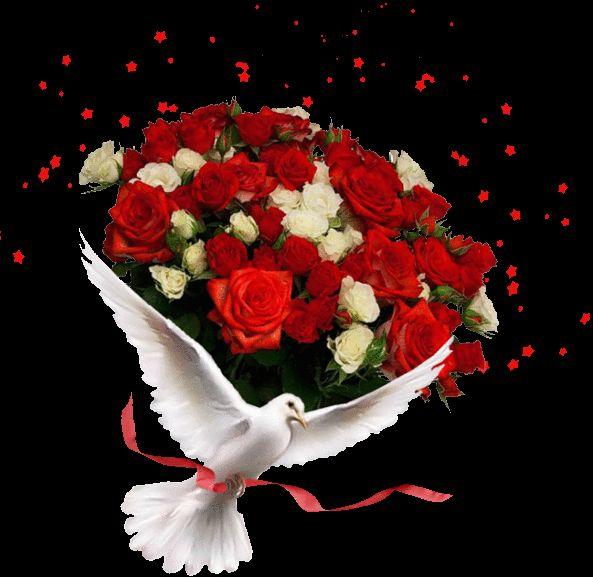 www.tvn.hu_d9a96e507d15b02977e54d84d3f24208.gif (593×577)