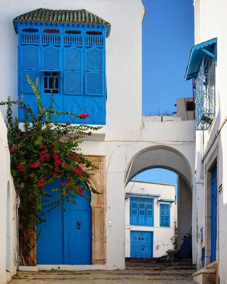 The town of Sidi Bou Said in Tunisia is a tourist attraction and is known for its extensive use of blue and white.