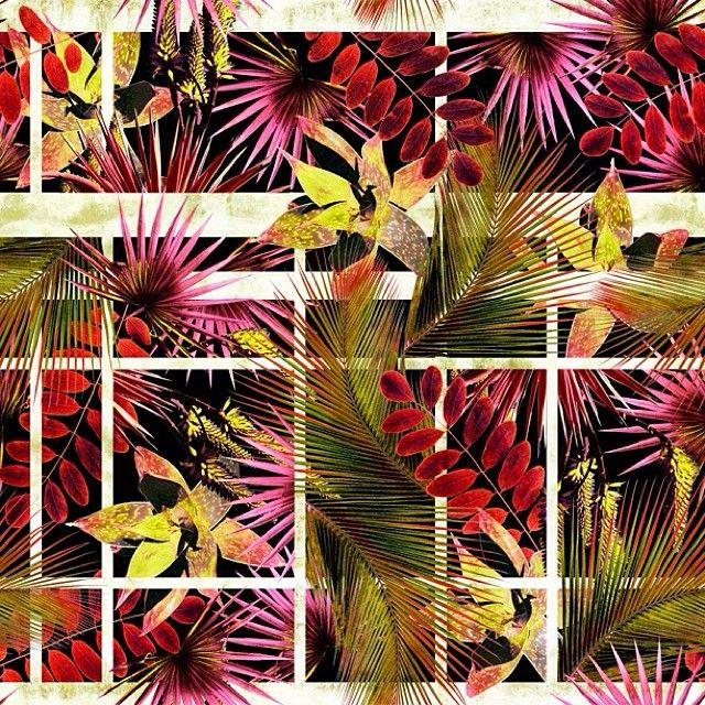KALIMO - Estampa Digital - Verão 2015