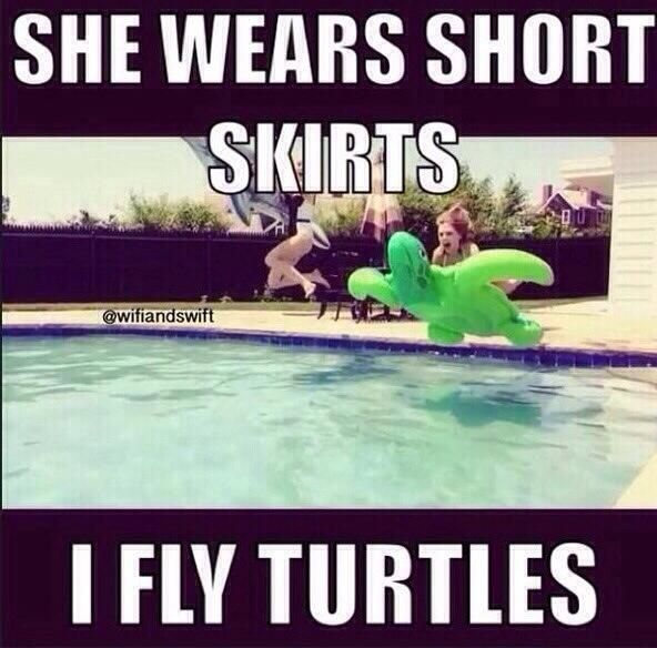 """""""Taylor Swift is the only real ninja turtle!"""" was Jaime's hilarious caption for this picture :)"""