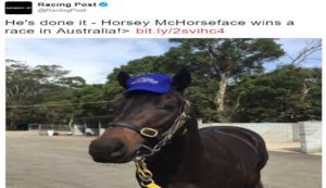 Horse Named 'Horsey McHorseface' Pulls Away For First Australian Win - Blooper News - News by you for you!™