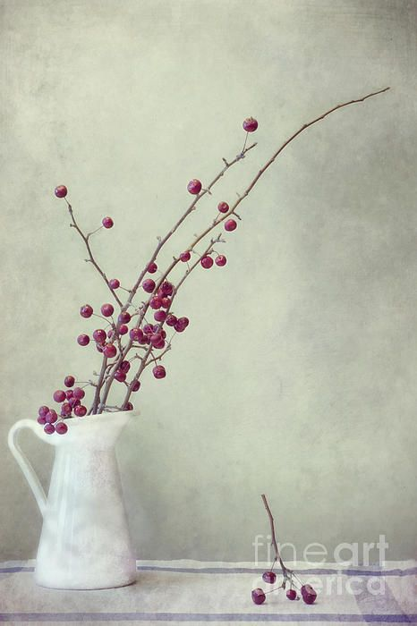 winter still life by Priska Wettstein