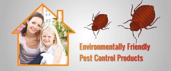وصفة سحرية للتخلص من الصراصير Environmentally Friendly Environment Pest Control