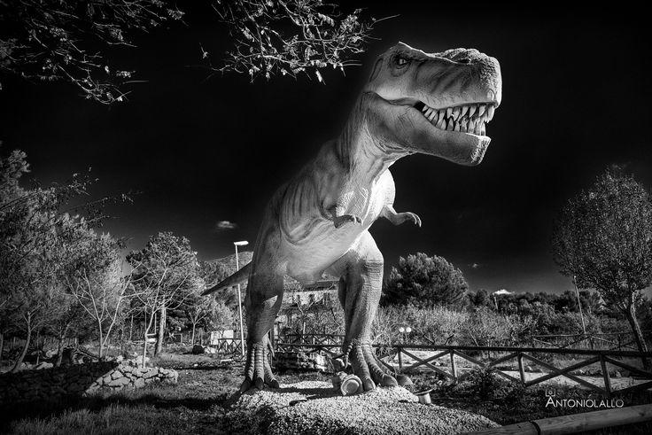 """T-Rex - Nuovo parco dei Dinosauri sul Gargano, a Borgo Celano frazione di San Marco in Lamis. Realizzato in scala 1:1 dalla stessa azienda che ha lavorato per il film """"Jurassic Word"""", è inoltre animato. ;) Sorry fot the english reader, I hope in google."""