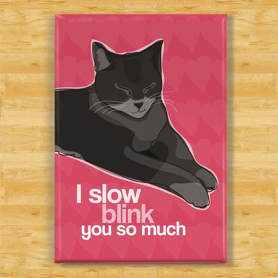 Cute Cat Magnet    Do you know about the Slow Blink? In kitty-speak it means I Love You. Try giving your kitty a slow blink - you just might get one in