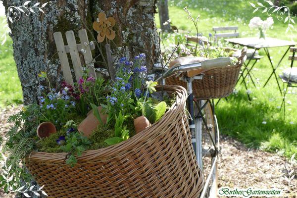 Garten Deko Omas Altes Fahrrad Im Neuen Gewand Birthes Gartenideen Wohnungkuche Gartendeko Dekoracjeswiateczne Hausk With Images Picnic Basket Picnic Outdoor