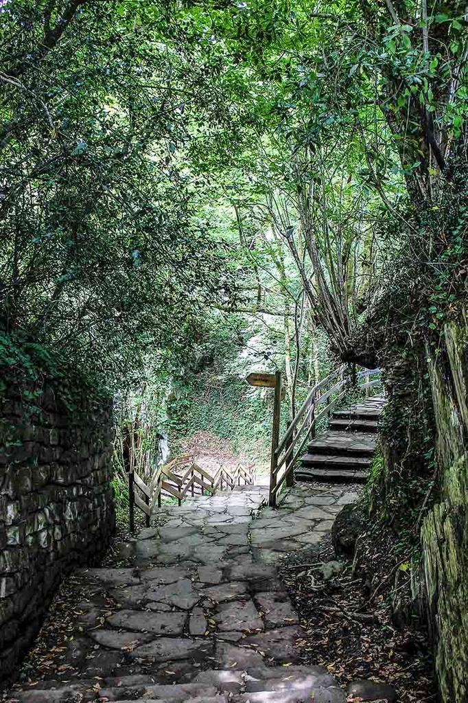 La belleza del camino hacia las cuevas de #Zugarramurdi #Navarra (Foto: Manuel Revilla - Twitter)