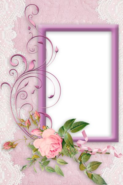 Nice Pink PNG Frame with Rose.