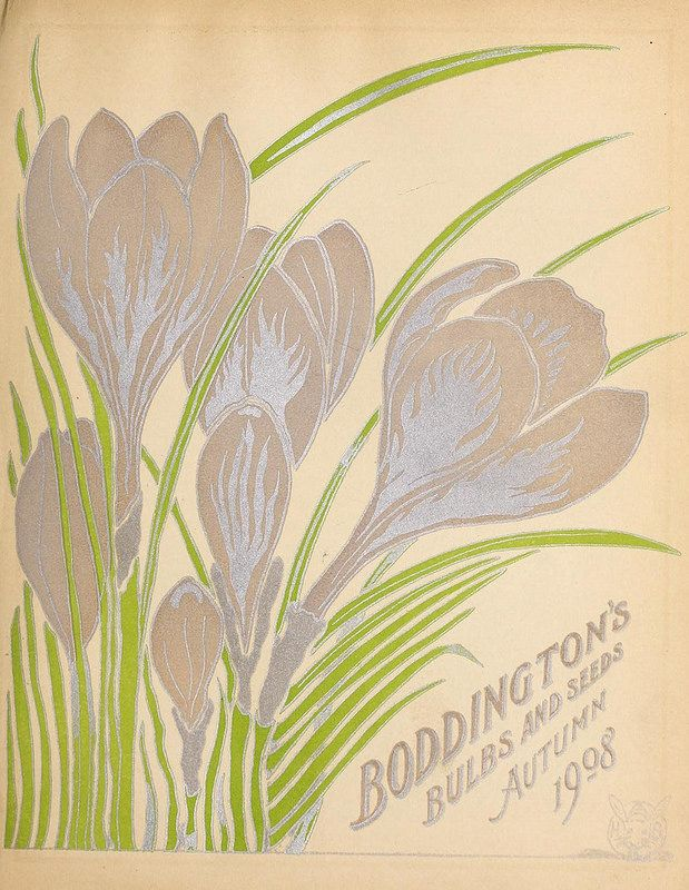 Boddington's quality bulbs, seeds and plants /.  New York, N.Y. :Arthur T. Boddington..