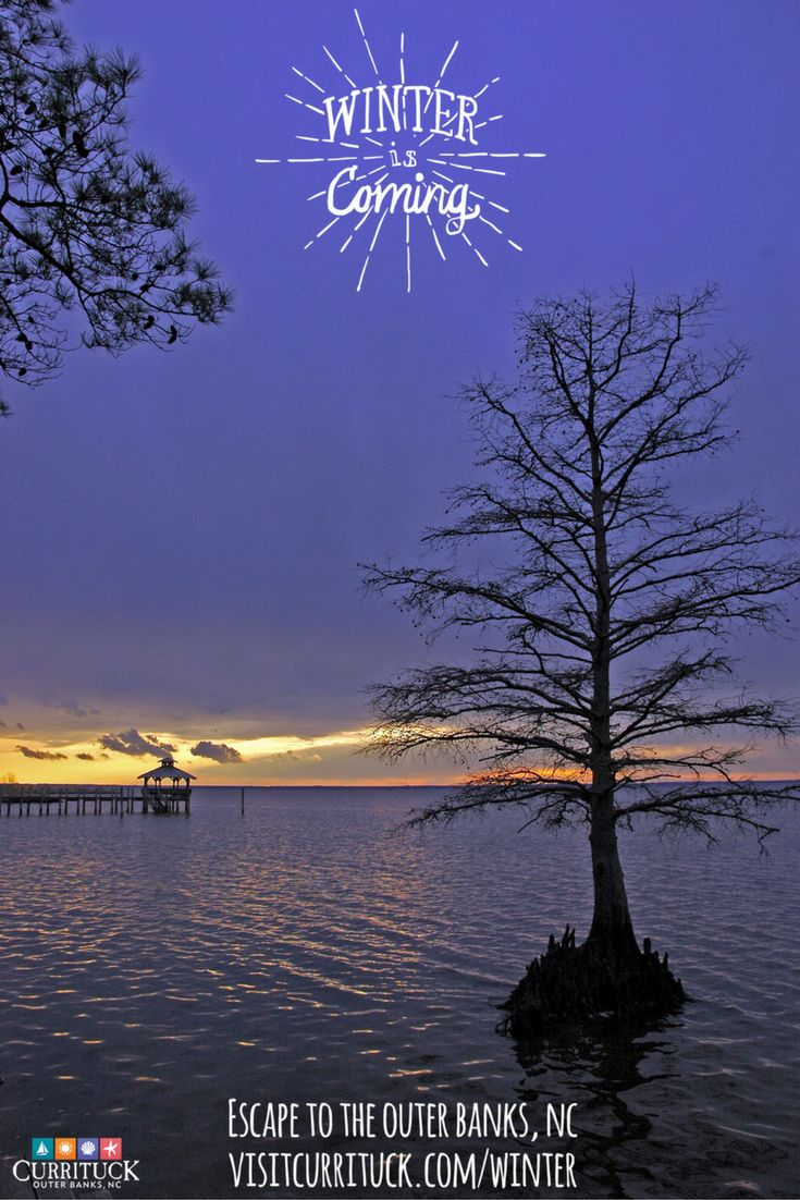 24 best images about christmas in currituck on pinterest for Outer banks sound fishing