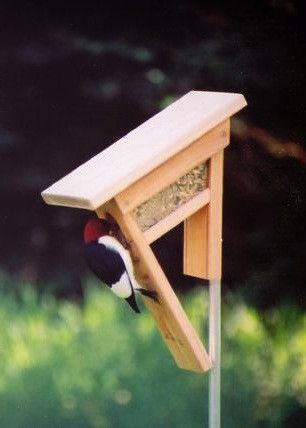 Clinger Feeder for chickadees and woodpeckers