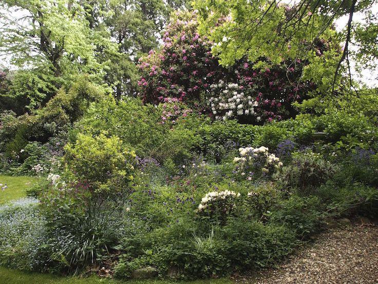 Hillandale Garden and Nursery Yeholme NSW. Shade garden