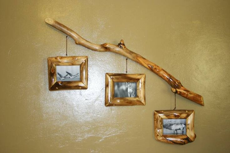 Image detail for -Log Plant Stands, Coat Racks, Lamps, Picture Frames, And Other Decor