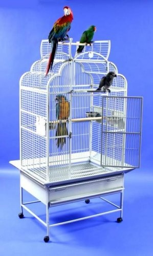 """$385.00-$329.00 Polly's Pleasures Victorian Wrought Iron Bird Cage 32 X 23 - Premium Wrought Iron Bird Cage Dome Top Opens as a playground. Victorian Cage with Opening Top Overall Height 64"""" Ideal for conures, cockatiels, congo african greys, small cockatoos and amazons. 3 feeder doors and 1 breeder door 32""""x23""""x45"""" OH-64"""" 5/8"""" spacing http://www.amazon.com/dp/B000LNDKTE/?tag=pin2pet-20"""