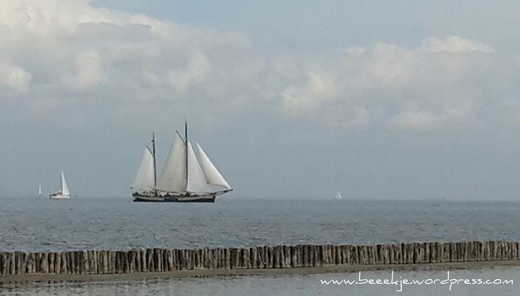 Ijsselmeer vanaf Zuiderzee museum