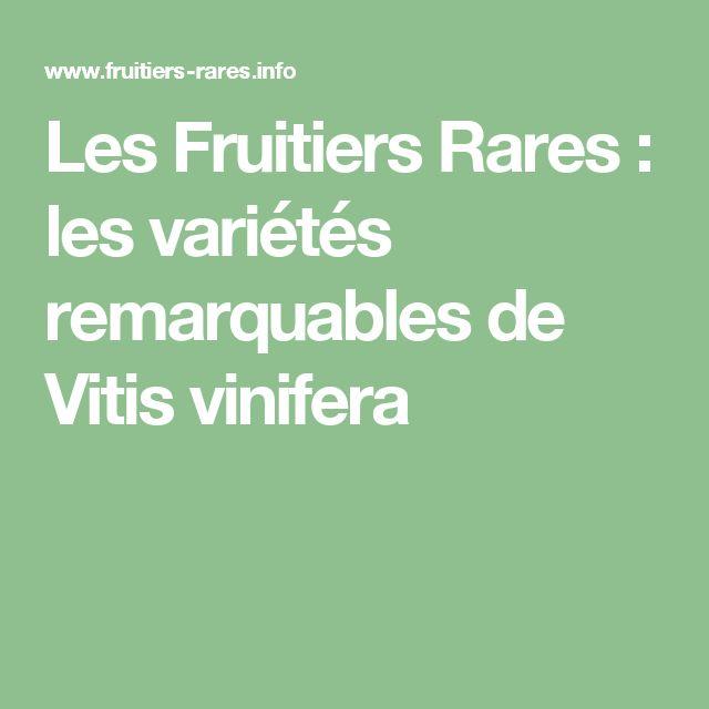 Les Fruitiers Rares : les variétés remarquables de Vitis vinifera
