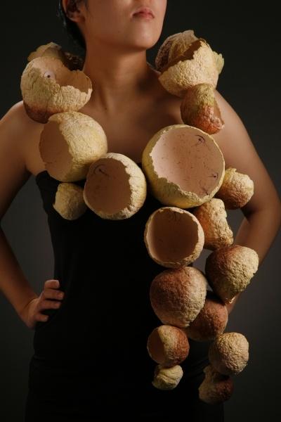 Damia Smith, Artist, Apothecia, cast paper, aluminum, copper