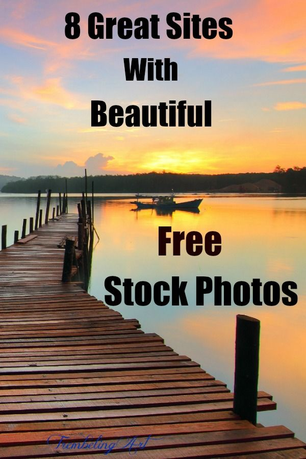 8 Great Sites With Beautiful Free Stock Photos Stock Photos Reference Photos For Artists Photo Website