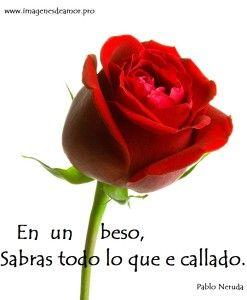 Imágenes de rosas con poemas cortos - http://www.imagenesdeamor.pro/2014/06/imagenes-de-rosas-con-poemas-cortos.html