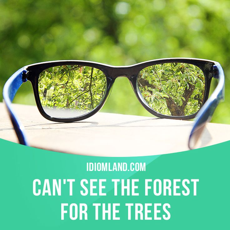 """Can't see the forest for the trees"" means ""to pay too much attention to details and not understand the general situation"". Example: Our operations manager can't see the forest for the trees because he's too involved in day-to-day matters. #idiom #idioms #slang #saying #sayings #phrase #phrases #expression #expressions #english #englishlanguage #learnenglish #studyenglish #language #vocabulary #dictionary #grammar #efl #esl #tesl #tefl #toefl #ielts #toeic #englishlearning"
