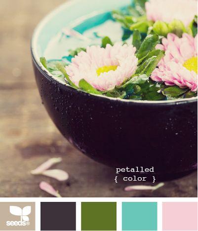 petalled color: Amazing Designseedslov, Petals Colors, Colors Combos, Design Seeds, Color Combos, Color Schemes, Wedding Colors, Colors Schemes, Blog Designs