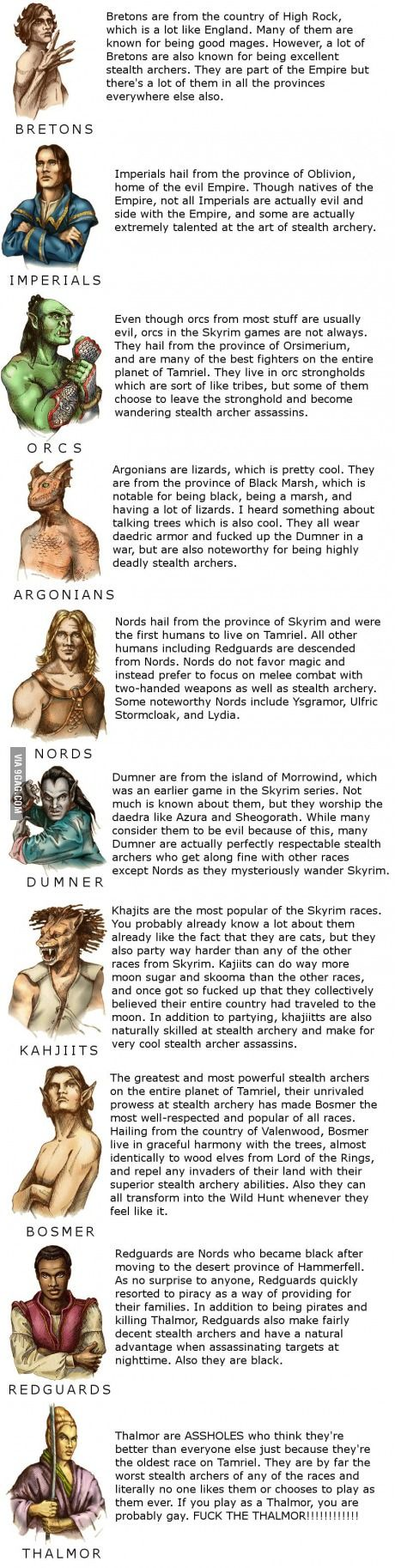 The races of Skyrim nords, dunmer, Khajiit, bosmer, Bretons, imperials, orcs, argonians, redgaurds, high elves