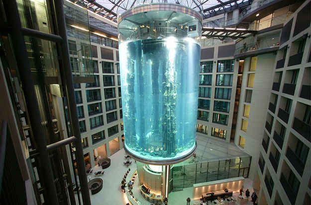 Giant Lobby Aquarium